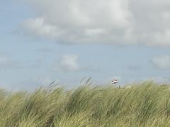 PA030417 (room76com) Tags: dutch design minimal minimalism sea beach fall autumn outside olympus nature architecture
