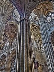 Salamanca 20180628 21 Catedral (ferlomu) Tags: arquitectura catedral ferlomu gotico salamanca
