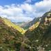 Madeira Mountain Panorama