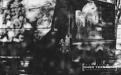 Street Scene: UPS Delivery (oterrason) Tags: street truck delivery ups unitedparcelservice courier blackandwhite monochrome monochromatic trees leaves branches twigs lowkey fuji film fujifilm fujifilmxpro2 xpro2 fujinon xf 80mmf28 macro fujinonxf80mmf28macro vehicle