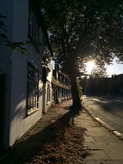 Chesterton Lane (badger_beard) Tags: chesterton lane cambridge cambridgeshire cambs south autumn fallen autumnal leaves shadow