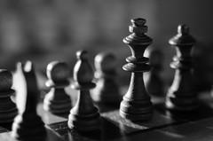 Lightstudy (Janine en Ron) Tags: schaakspel schaken schaakstukken game chess chesspieces black light backlight