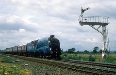 4468  bei Scarborough  xx.09.88 (w. + h. brutzer) Tags: scarborough grosbritannien webru eisenbahn eisenbahnen train trains england dampflok dampfloks steam lokomotive locomotive analog nikon railway