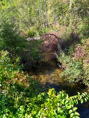 Bear Creek (2) (neukomment) Tags: parks michigan usa outdoors autumn september 2018 hdr android