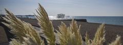 West Pier And Brighton Pier (grahambrown1965) Tags: ricohimagingcompanyltdpentaxk3ii ricoh pentax k3ii pentaxk3ii sigma 1020mm sigma1020mm brighton west pier piers westpier water sea beach shingle hove brightonandhove