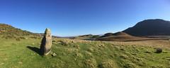 Maenhir Ffriddboedel. Llynnau Cregennen. (Gwylan) Tags: maenhir menhir cregennen ffriddboedel standingstone bronzeage oesyrefydd sky heath erosion sheep lake llynnoedd megalith megalithic upland ucheldir gorse eithin