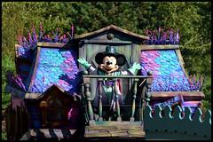Mickey's Halloween Celebration (ramonawings) Tags: phantom mano phantommanor france dlp disney disneyland paris disneylandparis riri ffi loulou rirififiloulou huey duey duck pluto donald donaldduck bride brides husband mickey minnie mickeymouse minniemouse panpan miccbunny bunny lapin halloween havest automne celebration mickeyshalloweencelebration