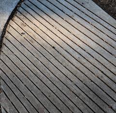 Sidewalk Lines (earthdog) Tags: 2018 sidewalk line condocomplex googlepixel pixel androidapp moblog cameraphone walkingdistance project365 3652018