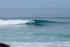 IMG_6484 (palbritton) Tags: surf surfing surfer singlefin longboard longboardsurfing surfcontest