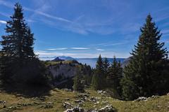 Charmant Som (Bastien Merlanchon) Tags: montagnes alpes chartreuse calcaire sapin arbres nature france isère charmant som ciel canon conifère