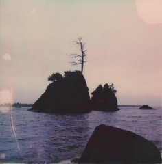 A place I like to visit (Celina Innocent) Tags: polaroidoriginals polaroidweek instantfilm