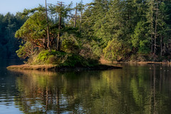 Lagoon Isle (johnscratchley) Tags: landscape nature beauty serenity lagoon hdrlandscape