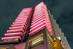 Pink Ribbon (Ballet Lausanne) Tags: tokyo marunouchi night d800 peninsulatokyo ペニンシュラ東京 ピンクリボン