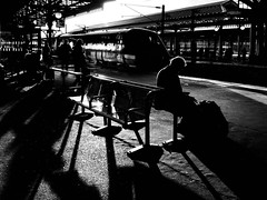 If You Could Read My Mind (sjpowermac) Tags: ifyoucouldreadmymind book reading sunset passenger sitting 1y38 91125 sun bench seat shadows class91 departure waiting backlighting halo station