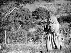 Entre Lalibela et Mekelé (Eyes to meet you) Tags: versmekele 4star tigray ethiopie