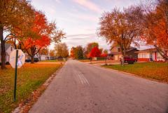 Soon to be Gone (kendoman26) Tags: hdr aurorahdr2019 autumn autumncolors fall fallcolors fallcolor nikon nikond7100 tokinaatx1228prodx tokina tokina1228 morrisillinois