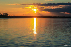 Con el sol te fuiste (Gaby Fil Φ) Tags: amazonasperuano amazonas ríopucate ríoamazonas latinoamérica perú sudamérica selva selvaperuana selvaamazónicaperuana atardecer atardeceres sunset puestadesol ocasos sol