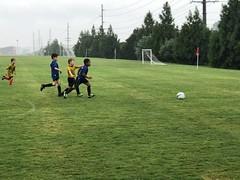MCSA Clarksville Soccer Fall 2018 Week 3 (6) (MCSA soccer) Tags: clarksville soccer mcsa montgomery heritage