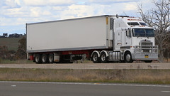 Almost KENWORTHs (1/2) (Jungle Jack Movements (ferroequinologist)) Tags: churchill wollongong hume highway lachlan valley way yass nsw new south wales kenworth spot difference hp horsepower big rig haul haulage freight cabover trucker drive transport carry delivery bulk lorry hgv wagon road nose semi trailer deliver cargo interstate articulated vehicle load freighter ship move roll motor engine power teamster truck tractor prime mover diesel injected driver cab cabin loud rumble beast wheel exhaust double b grunt twins same alike