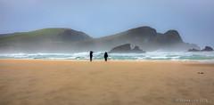 Surat Bay on a windy day (Northern wanderer) Tags: suratbay newzealand patricklow northernwanderer wind beach sand canon5dmkiv