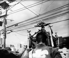 東京、平成30年秋 (Tokyo, autumn 2018) (Dinasty_Oomae) Tags: nationalgraflex ナショナルグラフレックス graflex グラフレックス 白黒写真 白黒 monochrome blackandwhite blackwhite bw outdoor 東京都 東京 tokyo 豊島区 toshimaku 駒込 komagome mikoshi 神輿 お神輿