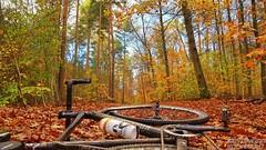 Bike-Sport-in-Berlin-by-Bike-Werk-RiderRacer-Bike-School-1