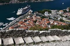 Kotor, Blick über Stadt und Bucht von der Wanderung entlang der Stadtmauer zur Festung Sveti Iwan