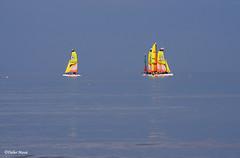 Ecole de voile (didier95) Tags: ecoledevoile voilier bateau bleu jaune mer normandie cabourg minimalisme