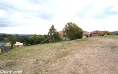 124 Townson Ave, Minto NSW