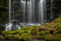 Scaleber III (Bogtramp) Tags: longexposure autumn moss landscape dales waterfall fosse north water scaleber nationalpark yorkshire foss force flowing settle