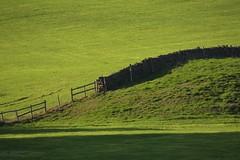 GreenFields (Tony Tooth) Tags: nikon d7100 nikkor 55300mm green field greenfield wall shadow rudyard staffs staffordshire