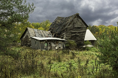 Nature wins out with this classic barn (TAC.Photography) Tags: barns barn abandoned derelict wornout decay aging antique michigan rural farms country upperpeninsula nikon nikoncamera 2018yip tomclarknet tacphotography upperpeninsulamichigan