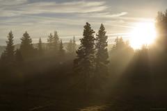 Sunrise (Samuel Raison) Tags: hautsplateauxduvercors vercors sunrise landscape paysage scenery leverdesoleil nature montagne mountain sun light shadows shadow naturephotography rays ombres ombre lumière nikkor nikon nikon282470mmafsg nikond800