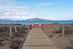 boardwalk (Adrienne Johnson SF) Tags: 2018 california crissyfield landscape ggnra sfbay sanfrancisco angelisland fujifilmxt10 artificialworld