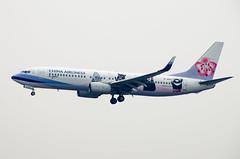 China Airlines Boeing 737 - 800 B-18657 Buddy Bears Livery (Ken Ngan) Tags: 737800 738 737 波音738 波音737800 波音737 中華航空 boeing738 boeing737800 b737 boeing737 ci chinaairlines