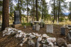 Fourmile Cemetery (.sanden.) Tags: florissant colorado unitedstates us cemetery tree landscape rock outdoors nature park outdoor tomb calamity grass rubble fungus wood flora pile mushroom environment food plant sitting field daylight standing ground travel area soil grave covered forest