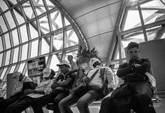 en passant par KL (Jack_from_Paris) Tags: r0003259bw ricoh gr apsc 28mm capture nx2 lr monochrom noiretblanc bw wide angle bangkok stop over airport aéroport transport thailande travel affiche bienvenue terminal boissons chariot personnes attente waisting time sieste nap cap