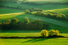 Vibes (S l a w e k) Tags: southdowns sussex england uk countryside landscape autumn