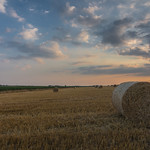 Harvest 2018 thumbnail