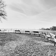 In a mood of ……… (Rosmarie Voegtli) Tags: inexplore againandagainandagain repetition blackandwhite warten bench restoring rest grateful thankful expressyourmood ourdailychallenge odc hamburg alster