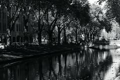 autumn light 7@Kö, Düsseldorf, Germany (Amselchen) Tags: water reflection trees kö düsseldorf germany season autumn fall mono monochrome blackandwhite bnw light shadow fujifilm xt2 fujifilmxt2 nikon nikkor ainikkor55mmf12