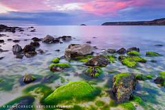 Bretonische Küste  Farben-der-Natur_0508 (explorerviews.de) Tags: cap frehel bretagne brittany landscapes seascape algues sunset rocks stairs ocean beliebte tags sky