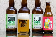 Perro Libre Solo Simcoe Double IPA & American Pale Lager (Let There Beer House) Tags: beer cerveja bier beerglass perrolibre doubleipa americanpalelager beerbottle