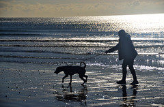New friends Oct29th 365/302 (Aidan B Kelly) Tags: dog girl silhouettes sand east wittering rescue