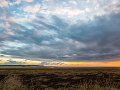 Over the salt marshes (@bill_11) Tags: england isleofthanet kent places pegwellbay sunrise unitedkingdom weatherandseasons ramsgate gb