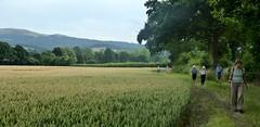 Walking Worcestershire. (jenichesney57) Tags: