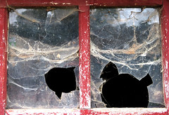 Back in Time (YIP2) Tags: old past vintage glass inside window abandoned outside abstract minimal decay lines remains simple detail minimalism texture surface barn line wall doors stilllife