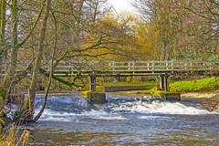 Foot Bridge & Ford, Ripon (Kingsley_Allison) Tags: footbridge ripon river riverskell northyorkshire water crossing walks walkingboots ramblers harrogate landscape nature nikon d7200
