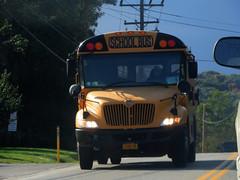 George M. Carroll #66 (ThoseGuys119) Tags: georgemcarrollinc newburghny schoolbus ic bluebird thomasbuilt
