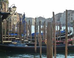 Ambiance vénitienne... /  Venetian atmosphere ... (FloDL) Tags: italia italie italy venise venice venezia gondole gondola gondolier piloris grandcanal canalgrande canałasso ambiance atmosphere lanterne lanterns lantana oiseau retrouvailles pointdevue